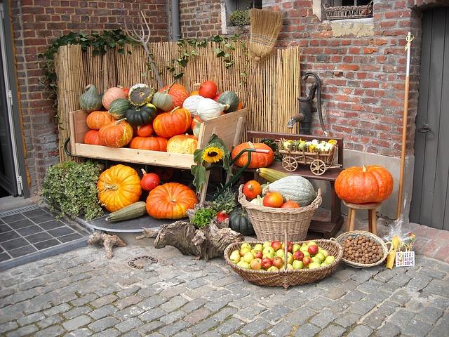 Pumpkin, zucchinis, squash